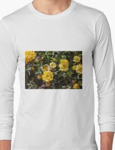 Yellow flowers in the garden. Long Sleeve T-Shirt