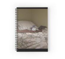 Totoro  my friend Spiral Notebook