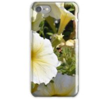 Beautiful pattern with white flowers in the garden. iPhone Case/Skin