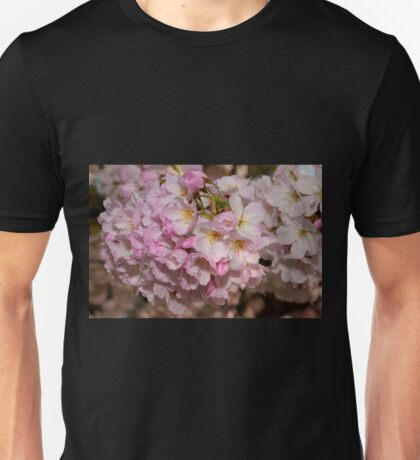 Cupertino Cherry Blossoms Unisex T-Shirt