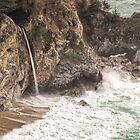 McWay Falls - Big Sur - California USA by TonyCrehan