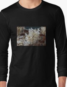 Whispers of Summer Past Long Sleeve T-Shirt