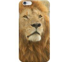 Wild Lion iPhone Case/Skin