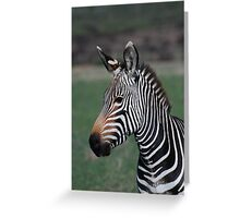 Zebra Style Greeting Card