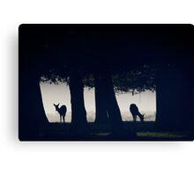 Woodland Windows Canvas Print