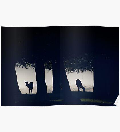 Woodland Windows Poster