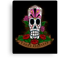 Mexican Fandango! Canvas Print