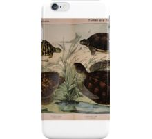 Natural history of the animal kingdom for the use of young people. iPhone Case/Skin