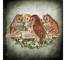 Vintage Owl Photographic Print