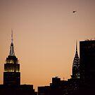 Vol sur Manhattan  by Jean-Luc Rollier
