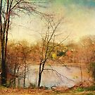 Croft Farm by John Rivera