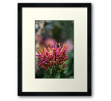 Black Wings with Green Dots Framed Print