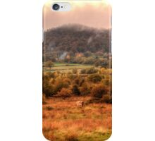 Herefordshire Cow on Castlemorton Common, Worcestershire iPhone Case/Skin