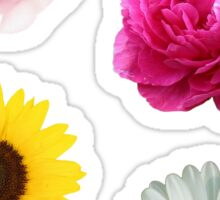 Flowers Set Sticker