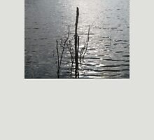 Twigs In The Lake #4 Womens Fitted T-Shirt