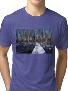 Shadows And Ice Tri-blend T-Shirt