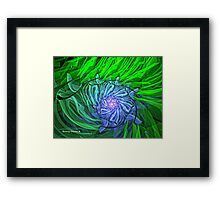 Iris Therapy Framed Print