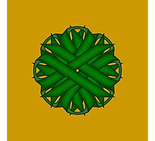 Emerald Green Flower Ribbon Photographic Print