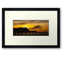 Starling Sunset Framed Print