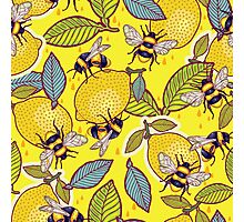 Yellow lemon and bee garden. Photographic Print