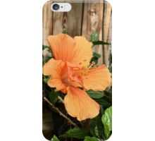 Peach Hibiscus iPhone Case/Skin