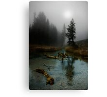 Kings Creek. Canvas Print