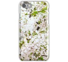 Blossoms in spring iPhone Case/Skin
