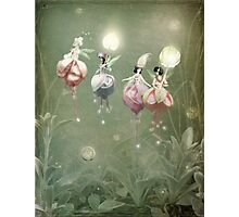 Floating Fuchsia Fairies Photographic Print