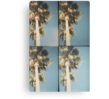 palm vibes Canvas Print