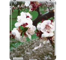 White Blossoms # 1 [Photo] iPad Case/Skin