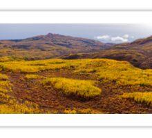 Fall taiga recovering from fire, Fox Lake burn, Yukon Territory, Canada Sticker