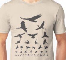 Birdwatching Eye Chart Modern Birding Gift Unisex T-Shirt