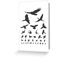 Birdwatching Eye Chart Modern Birding Gift Greeting Card