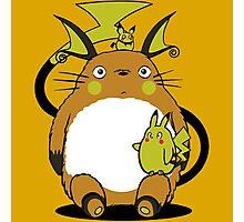 totoro,pokemon Photographic Print