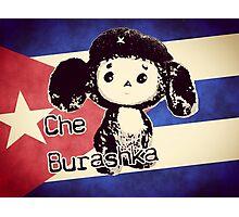 Che Burashka Photographic Print