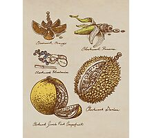 Steampunk  Fruit Photographic Print