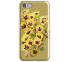 Yellow Wildflower with Purple Center iPhone Case/Skin