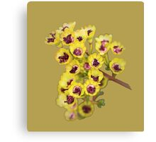 Yellow Wildflower with Purple Center Canvas Print