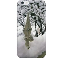Fence in Winter iPhone Case/Skin