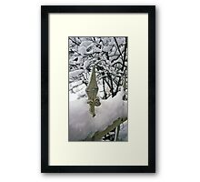 Fence in Winter Framed Print