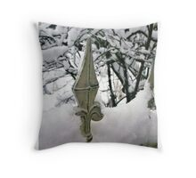 Fence in Winter Throw Pillow