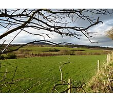 The Green Fields Of Home Photographic Print