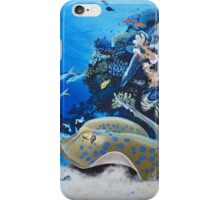 Ray iPhone Case/Skin