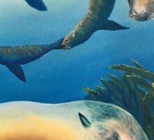 Hello from Sea Lion Sticker