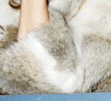 fur Sticker