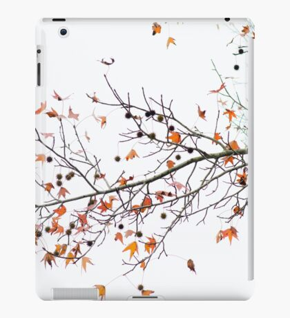 Orange Leaves and Gumballs iPad Case/Skin