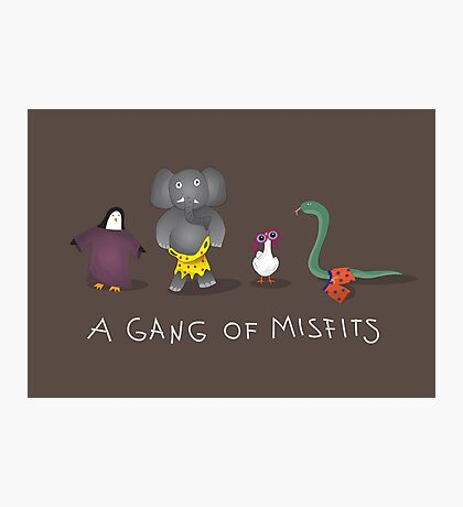 A gang of misfits Photographic Print