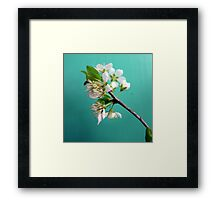 Still Life with Spring Framed Print