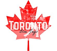 Toronto Blue Jays Canada Photographic Print