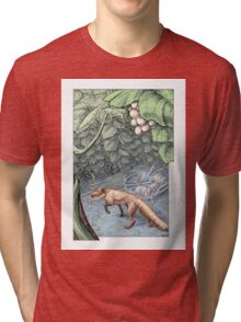 The Fox and the Grapes Tri-blend T-Shirt